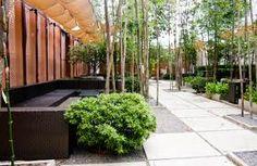 courtyard--courtyards